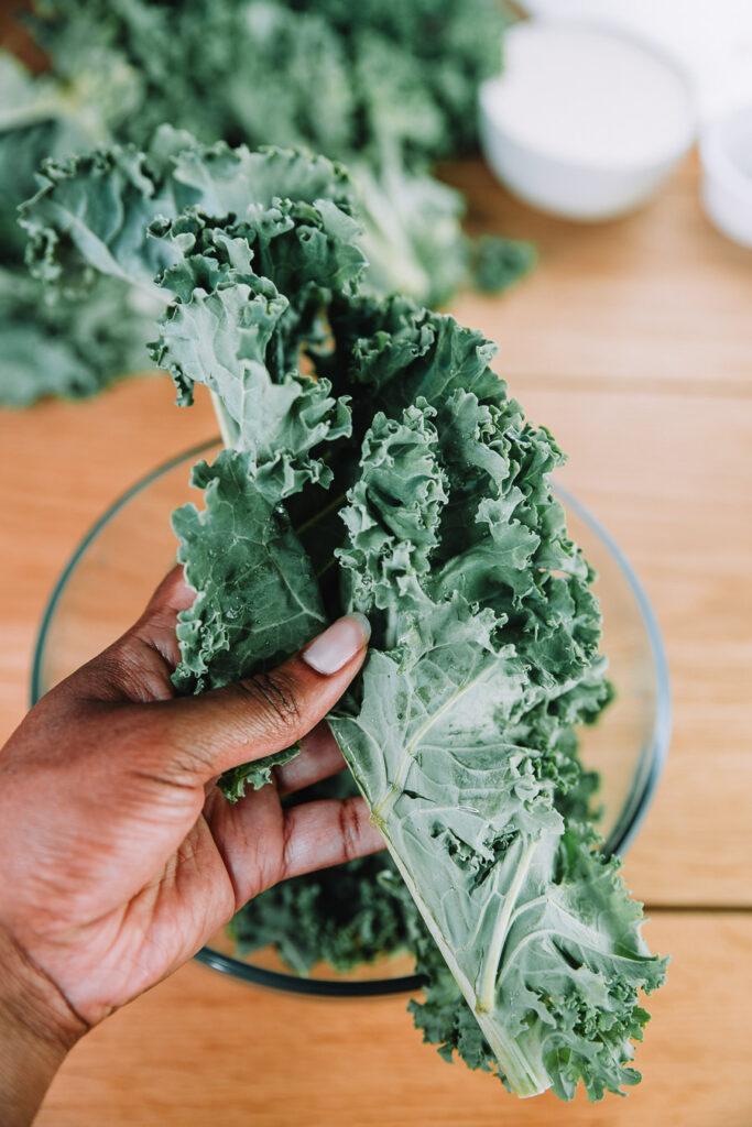 Kale Caesar Salad recipe by Farmer's Market Society l Market Inspired Meals.